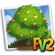 Sweet Pumpkin Persimmon Tree