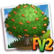 Brown Select Satsuma Mandarin Tree