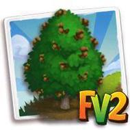 Turkish Hazelnut Tree