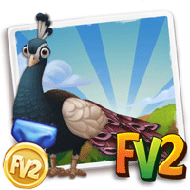 Prized Burford Bronze Peacock