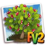 Cactus Pear Tree