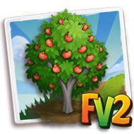 Pixie Mandarin Tree