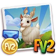Prized Girgentana Goat