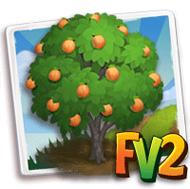 Ansu Apricot Tree