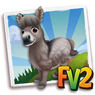 Grey Dun Mini Donkey