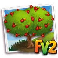 Irish Strawberry Tree