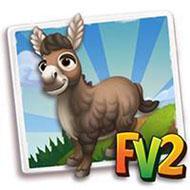 Norman Mini Donkey
