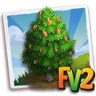 Siberian Pine Tree