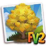Yellow Wintersweet Tree