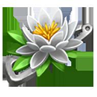 White Lily Pin