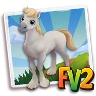 Baby White Fell Horse