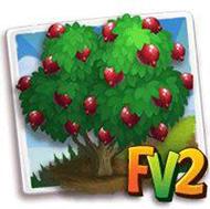 Velvet Pomegranate Tree