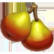 European Wild Pear