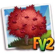 Red Chokeberry Tree