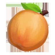 Ansu Apricot
