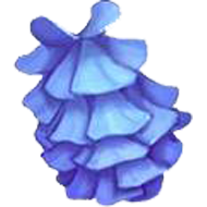 Blue Chinese Whisteria