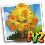 Heirloom Yellow Wintersweet Tree