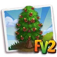 Pondorosa Pine Tree