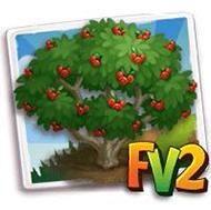Firethorn Tree