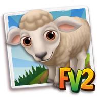 Baby Targhee Sheep