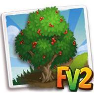 Giant Bearded Fig Tree