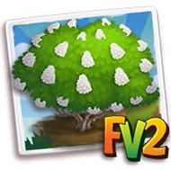 White PeeGee Hydrangea Tree