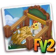 Chicken Nursery