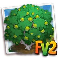 Greengage Plum Tree