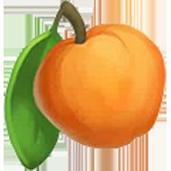 Dorset Apple