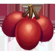 Mirabelle Plum Ruby
