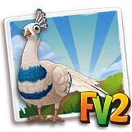 Silver-Pied Spalding Peacock