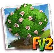 Yellowthroat Tree