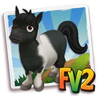 File:Black Falabella Mini Horse.png