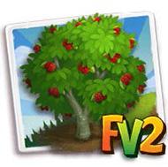 Texas Mulberry Tree