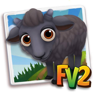 Baby Black Racka Sheep