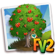 Heirloom Flame of the Forest Tree