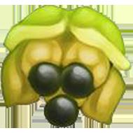 Jamaican Ackee