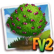 Panamint Nectarine Tree