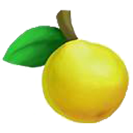 Rio Grande Lemonquat