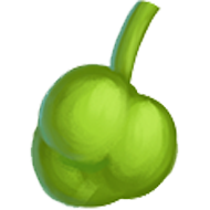 Elephant Apple