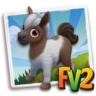 Baby Australian Mini Pony