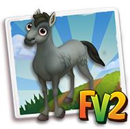 Baby Grey Newfoundland Horse