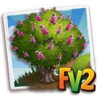 Heirloom Pongam Tree