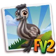 Baby Southwestern Emu