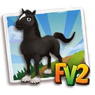 File:Black Clydesdale.png
