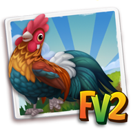 Rooster (2)