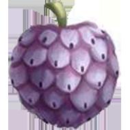 Pink Ilama Fruit