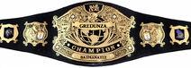 Batmanatee fWc Undisputed belt