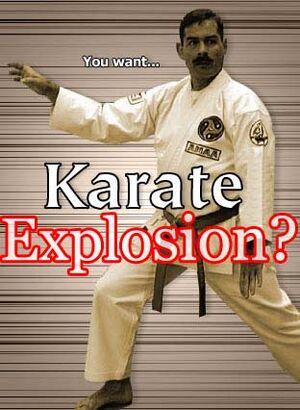 Karatecopy1nz