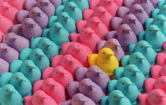 File:Marshmallow peeps.jpg